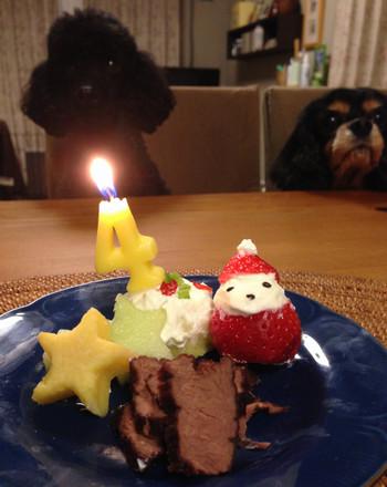 Cake1_s
