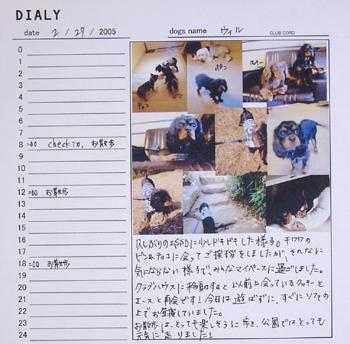 2月27日ウィルの日記